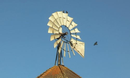 Stalford Seed Farms windmill