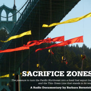 Sacrifice Zones icon