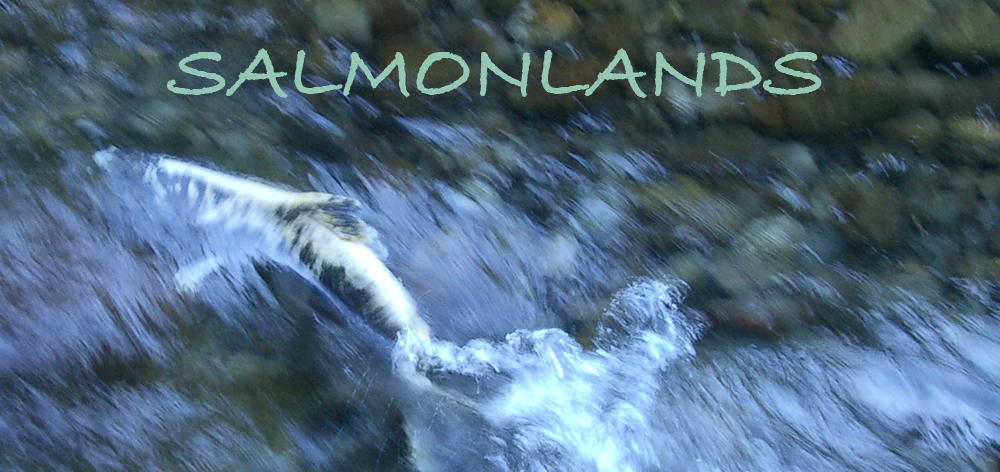 Salmonlands-page-image
